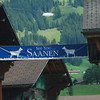 Switz016 The village of Saanen has these lovely chalets in town with more going up the hillside behind   Great skiing in winter and hiking in summer