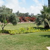 Grounds of Mount of Beatitudes
