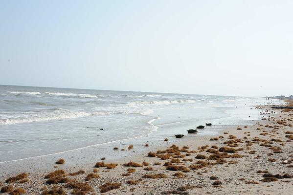 Texas Gulf Coast Photo Road Trip