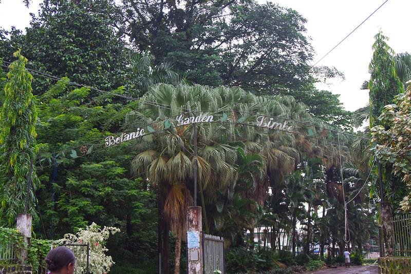 2011-07-03-Botanic-Gardens