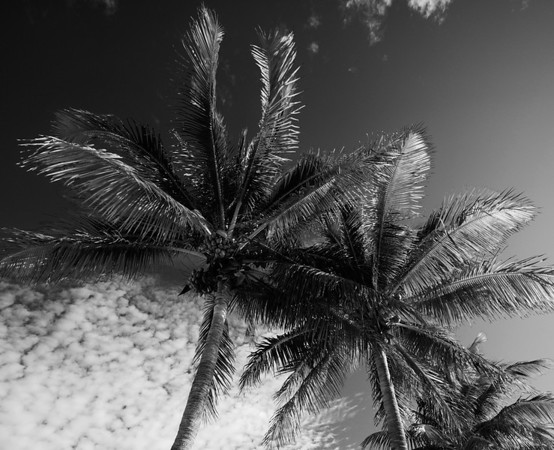 2011-1 Key West