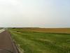 Kansas windmills