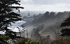 """Looking northwest toward Oakura on a foggy morning at high tide.  The collection of vehicles at center is at the Oakura """"holiday park,"""" where vacationers rent camping and camper spaces."""