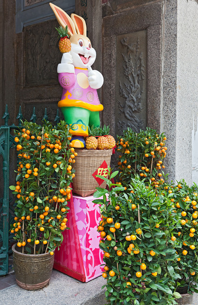 We arrived during the celebrations for Chinese New Year.  It was the year of the rabbit.  Here, a rabbit not seen in nature together with the ubiquitous orange trees that mark the New Year celebration.