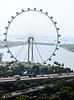 "The big wheel -- 541 feet at its highest point.  Singapore claims that this one is even bigger than the ""big eye"" wheel in London."