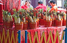 New Year fruit and vegetable baskets for purchase to be left as offerings at a Chinese temple on the tour.