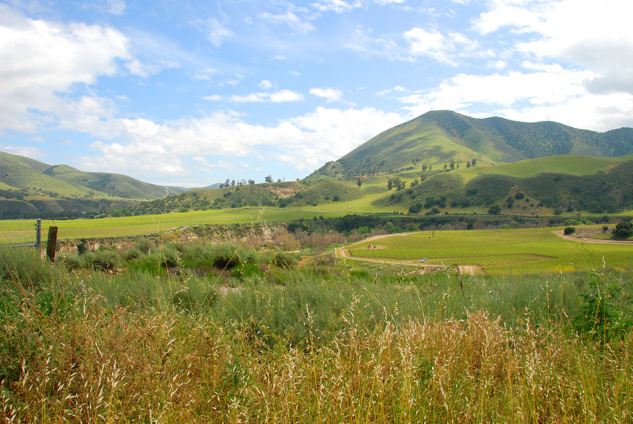 Hills in Carmel Valley.
