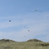 A kite contest over the beach.