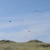 A kite contest over the beach.