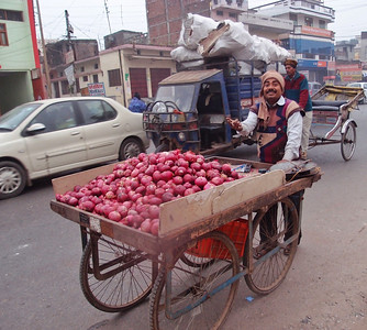 Onion seller on the streets of a small town near Kushinagar
