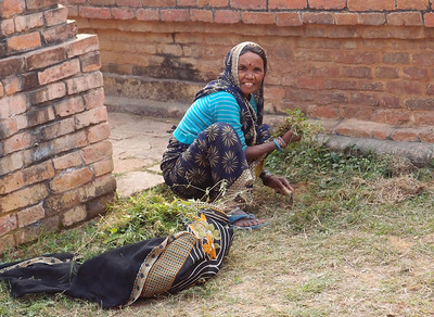 Woman harvesting herbs at a sacred site