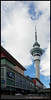 Sky Tower is the tallest (383 m ) man-made structure in New Zealand. It serves as an observation and telecommunications tower and tourist attraction.<br /> <br /> Auckland, NZ<br /> 020