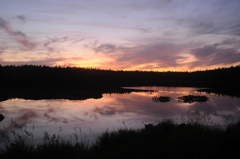 Sunset in Acadia National Park.  I stepped out for 2 minutes to take this picture and was attacked by so many mosquitos