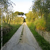 The drive leading to Villa Il Poggio near Siena