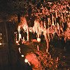 Meramec caverns - 01