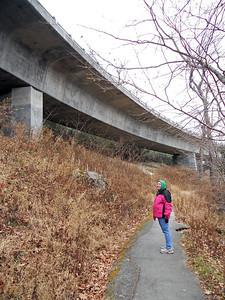 Below the Linn Cove Viaduct.