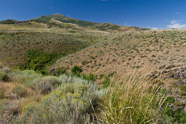 In the Humbolt Range in Nevada