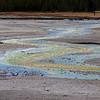 Norris Geyser Basin - Porcelain Basin