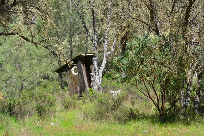 The outhouse behind the homestead cabin.