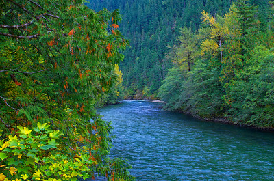 The Skagit River from the footbridge at Newhalem, WA
