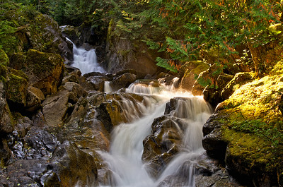 Deception Falls, Steven's Pass, WA