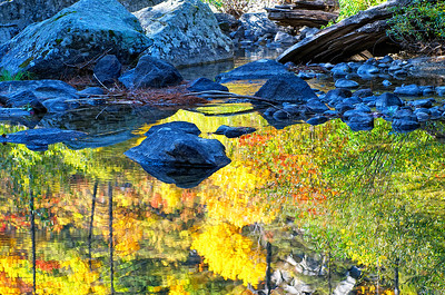 A small pond in Tumwater Canyon - east side of Steven's Pass