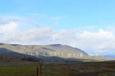 Wind Farm near Goldendale, WA