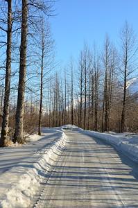 Winter Road - Portage, Alaska