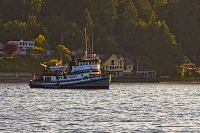 A tugboat in Budd Inlet for Harbor Days festivities