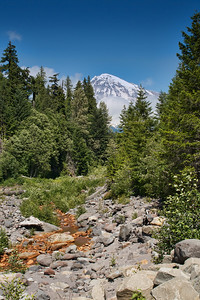 Kautz Creek in Mt Rainer National Park