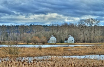 The Barns at the Nisqually Wildlife Refuge