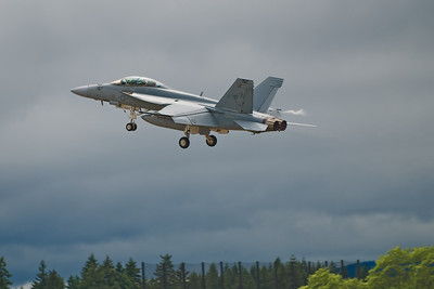 The Boeing F/A-18 Super Hornet is a twin-engine carrier-based multi-role fighter aircraft.