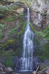 Marymere Falls - a hike on the east end of Lake Crescent.