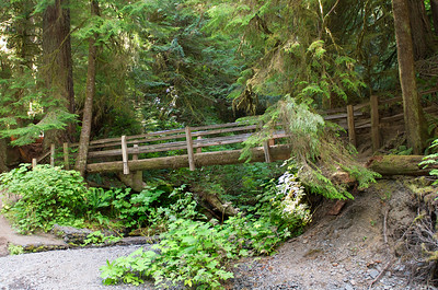 A footbridge on the trail to Marymere Falls