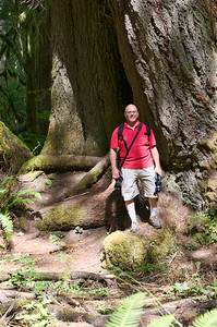 Dale standing near two big cedar trees