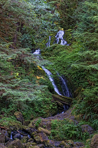 Waterfall near Lake Quinault on the Olympic Peninsula