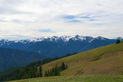 Hurricane Ridge and the Olympic Mountains