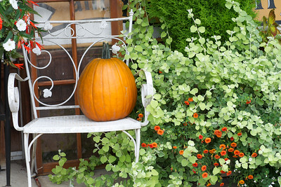 Fall decoration in downtown Ridgefield.