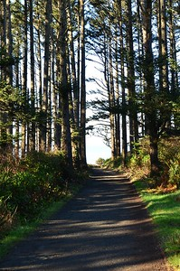 Short trail to North Head Lighthouse.