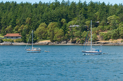 A couple sail boats we passed while riding the ferry to Friday Harbor, WA