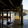 Wharf Punga Cove Resort