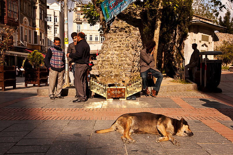 Lazy afternoon, Galata district