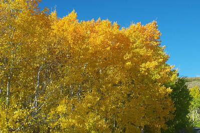 Virginia Lakes Rd Eastern Sierras California Oct 2011