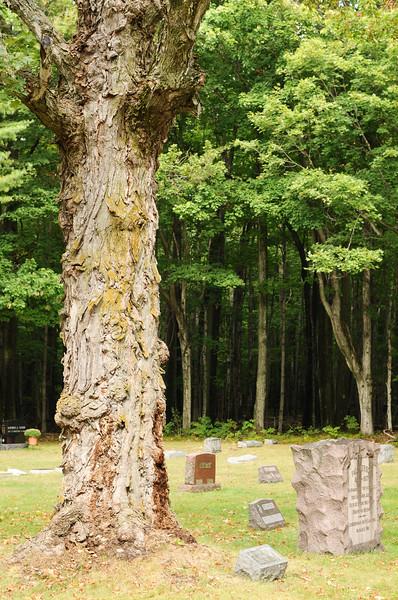 blossomberg-cemetery-5390
