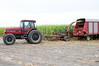family-and-farm-4452