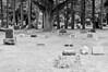 blossomberg-cemetery-5392