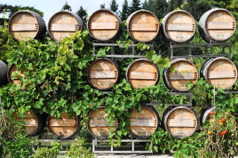 stones-throw-winery-5635