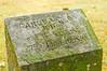 blossomberg-cemetery-5369
