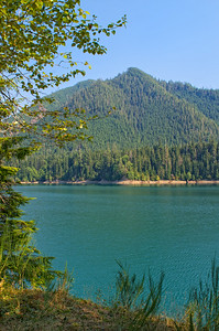 Wynoochee Lake - this is a resevoir held back by a Tacoma Power and Light dam.  Water levels are quite low this time of year.