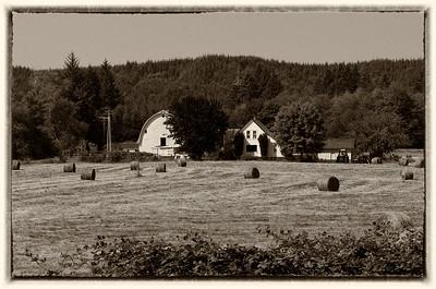 Farm on the Wynoochee Rd.